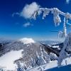 Osnica po 2 týžňoch sneženia, 14.3.2009, foto: Jozef Jurík
